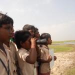 8.-Birdwatching