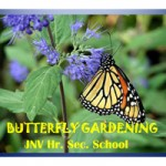 JNV-Butterfly-gardening_low-res-1